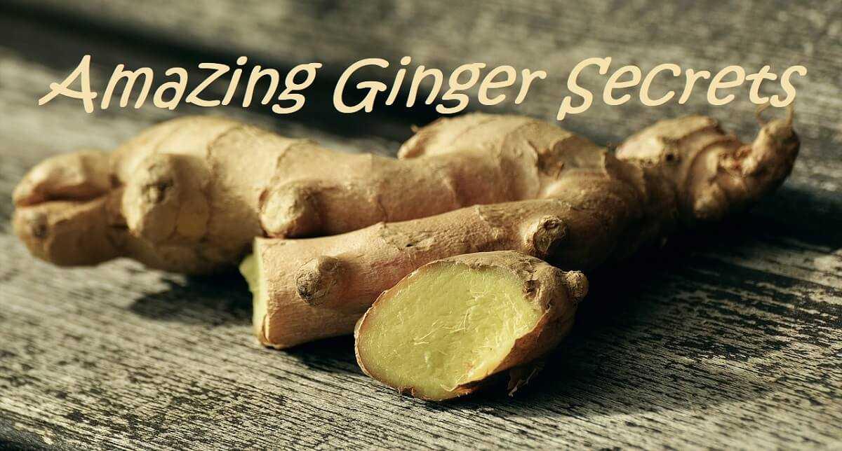 amazing ginger secrets